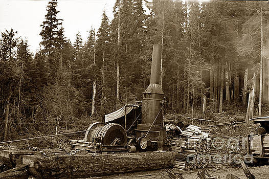 California Views Mr Pat Hathaway Archives - Willamette steam donkey logging circa 1915