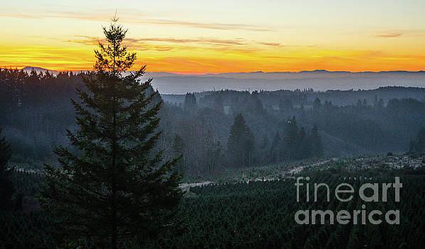 Willamette Valley Sunset by Nick Boren