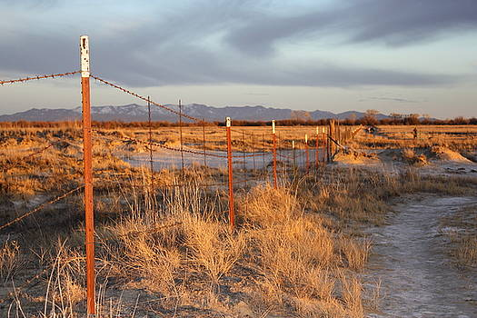 Willcox, AZ Fence by Judy C Moses