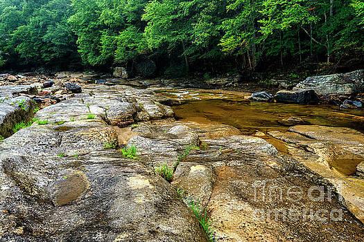 Williams River on the Rocks by Thomas R Fletcher