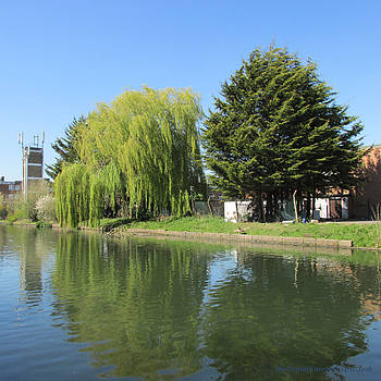 JESSICA WILLOW likes DAVID PINE - Grand Union Canal - PARK ROYAL  by Mudiama Kammoh