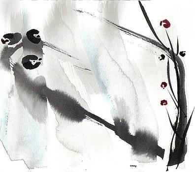 Casey Shannon - Willow Birds