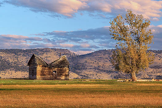 Willow Creek Cabin by James Eddy