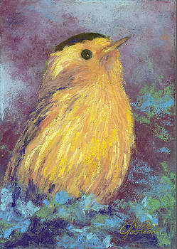 Willson's Warbler by Grace Goodson