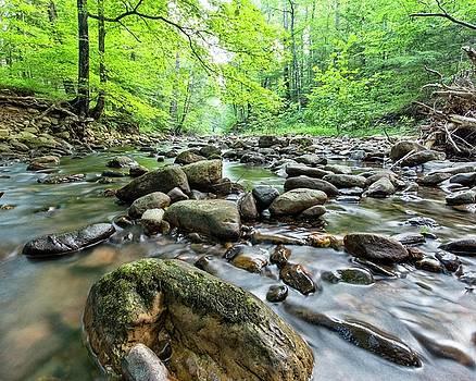 Wilson Creek by Alan Raasch
