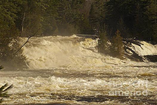 Elaine Mikkelstrup - Wilsons Falls