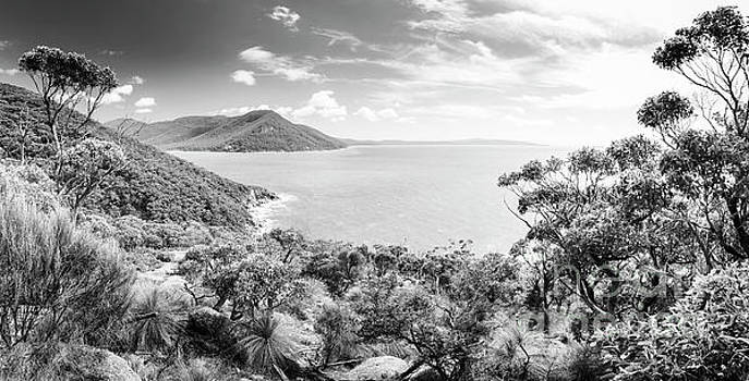 Tim Hester - Wilsons Promontory Panorama Black and White