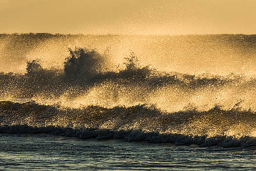 Wind and Waves by Sheen Watkins