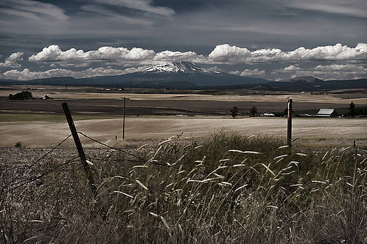 Wind blown plains by Tod Colbert