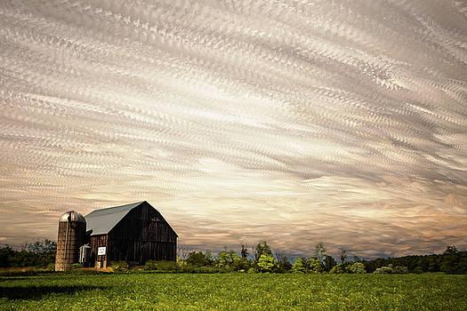 Wind Farm by Matt Molloy