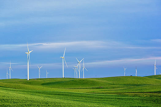 Wind Farm by Randy Bayne