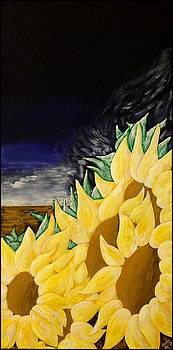 Wind in the Sunflowers by Heidi Moss