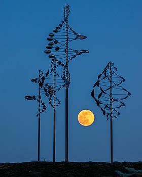 Chris Bordeleau - Wind Sculptures at Wilkeson Pointe