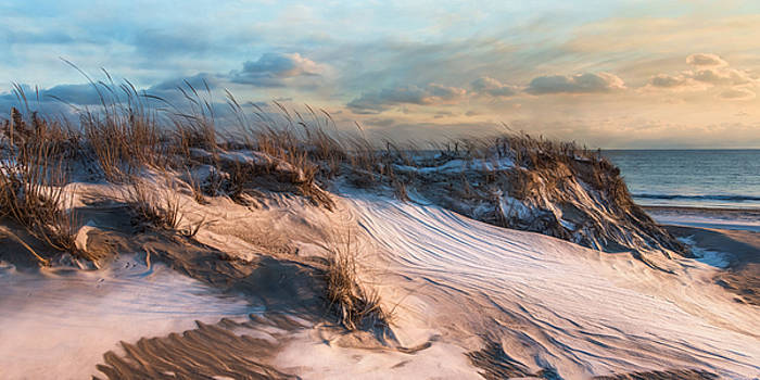 Wind Swept by Robin-Lee Vieira