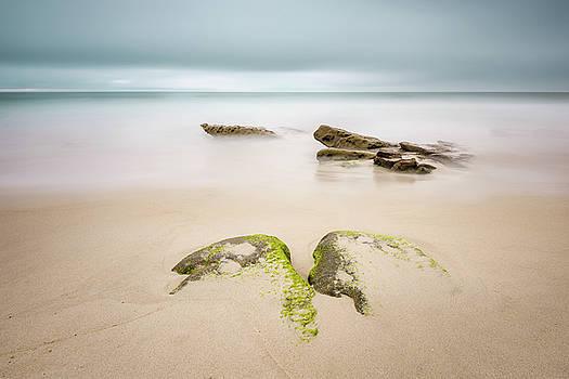 Windansea - Surfacing by Alexander Kunz