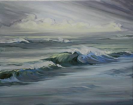 Windblown by Amy Bernays