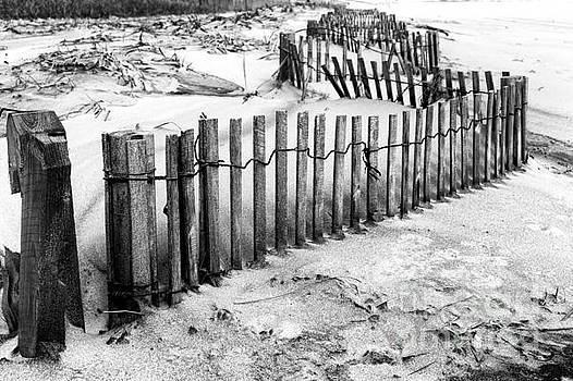 John Rizzuto - Winding Dune Fence