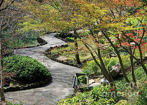 Winding path by Inspirational Photo Creations Audrey Woods
