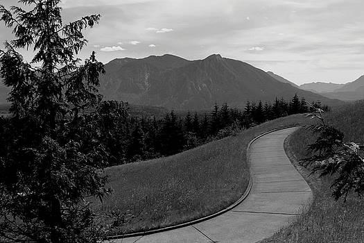 Rosanne Jordan - Winding Path