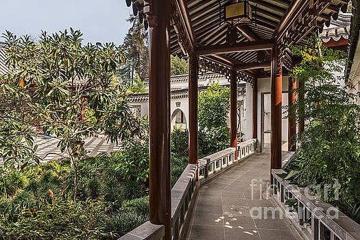 Jamie Pham - Winding Pavilion at the Chinese Gardens in the Huntington.