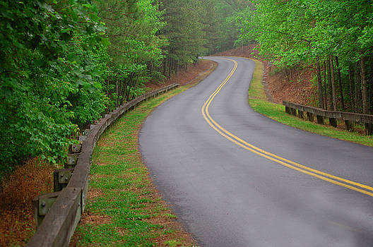 Winding Road by David Smith