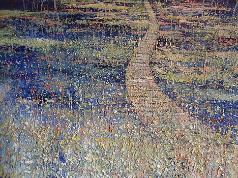 Winding Walkway by Richard E Christian
