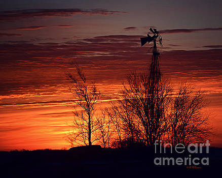 Windmill And Trees At Sunrise by Kathy M Krause