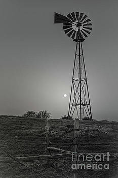 Windmill At Dawn by Robert Frederick