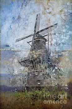 Windmill in Amsterdam by Barbara Dudzinska