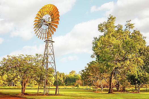 Windmill in Australian Outback by Daniela Constantinescu