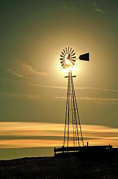 James Steele - Windmill in Colorado