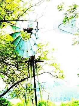 Christine Belt - Windmill of Kansas