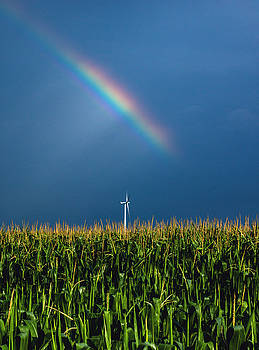 Windmill Rainbow by Cale Best