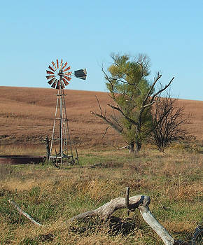 Windmill with Log by Rex E Ater