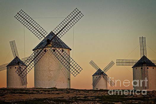 Heiko Koehrer-Wagner - Windmills in golden light