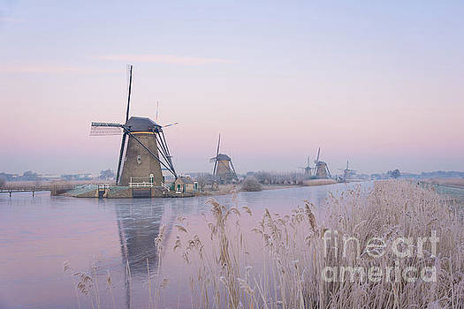 Windmills in the Netherlands in the soft sunrise light in winter by IPics Photography