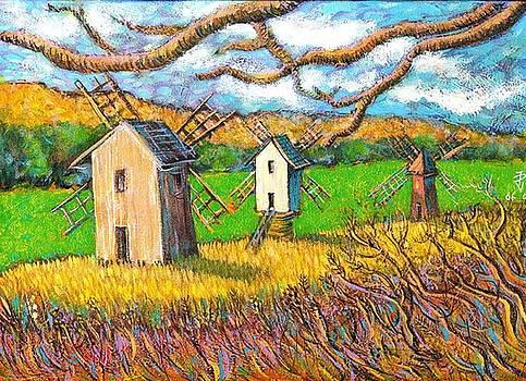 Ion vincent DAnu - Windmills Sibiu Romania