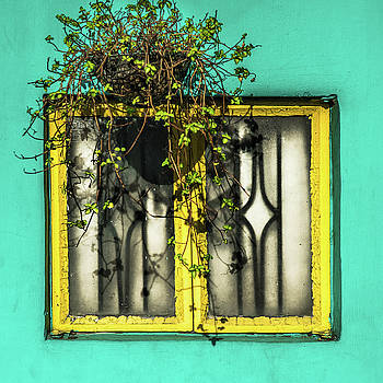 Window And Basket by Michael Arend