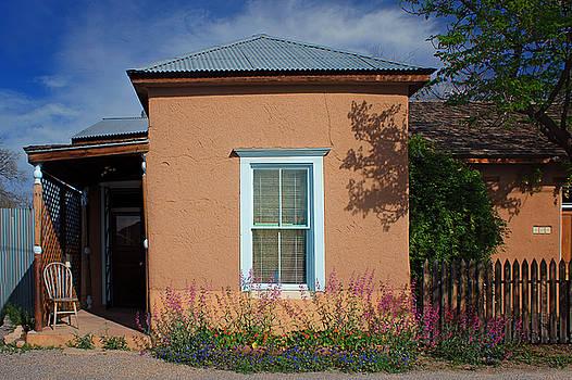 Nikolyn McDonald - Window and Flowers - Barrio Historico - Tucson