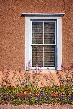 Nikolyn McDonald - Window and Flowers Detail - Barrio Historico - Tucson