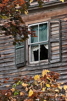 Window by April Bielefeldt
