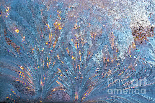Window Frost At Sunset by Cheryl Baxter