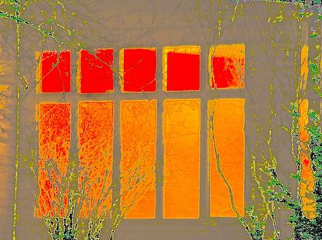 Window by Gillis Cone
