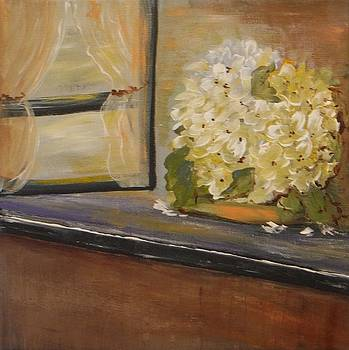 Window Light by Jacqueline Whitcomb
