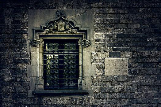 Window by Mickael PLICHARD