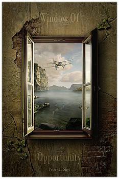 Window Of Opportunity by Peter Van Stigt