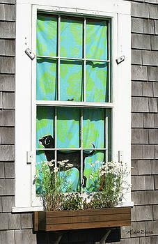 Michelle Wiarda - Window on Marthas Vineyard Island Massachusetts
