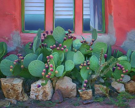 Window - Prickly Pear by Nikolyn McDonald