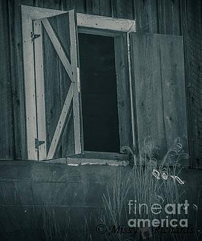 Window To My Soul by Missy Richards