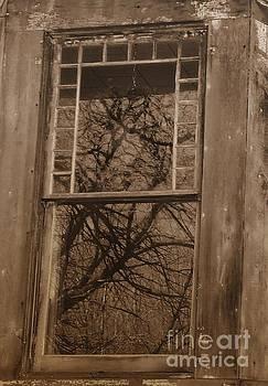 Window To The Soul by Vicki Lynn Sodora
